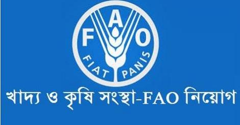 FAO Job Circular